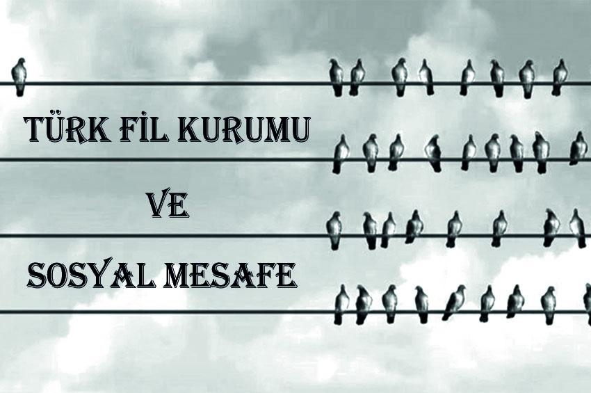 Türk Fil Kurumu Ve Sosyal Mesafe