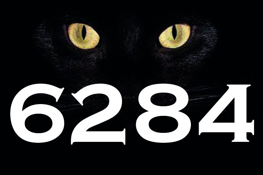 Erkek İle Kadın İçin Kara Kedi Yasası: 6284